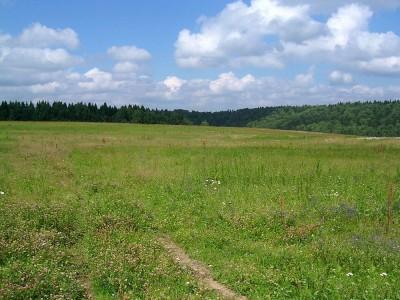 Взыскание штрафа по договору пользования землёй